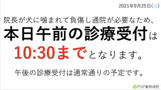 スクリーンショット 2021-09-25 8.37.59